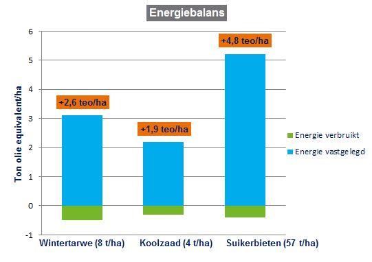 Hoeveel energie produceert een landbouwgewas.jpg