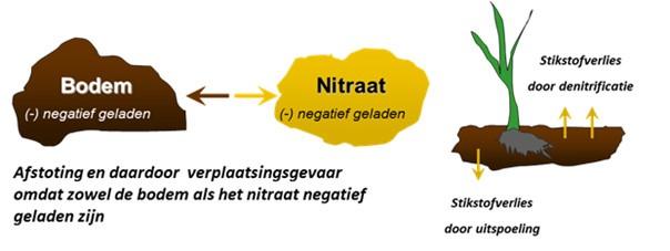 bodem_nitraat_negatief_geladen.jpg
